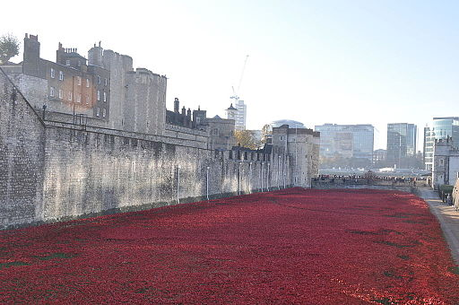 Blood Swept Lands and Seas of Red, Poppy installation art at the Tower of London, morning of 6 November 2014 View looking S of West Moat - Photo Credit: The Land
