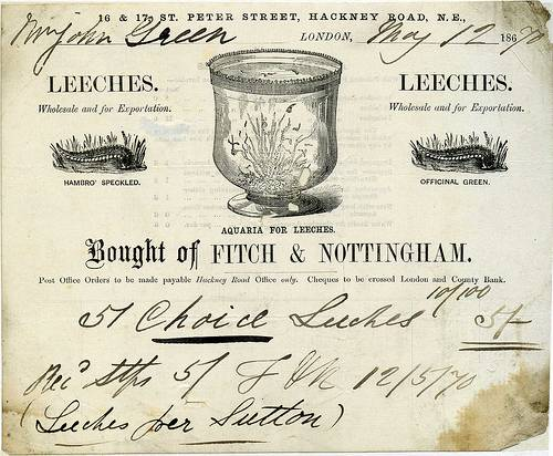 1870 receipt for the purchase of medical leeches from Fitch & Nottingham, London. From Swindon Local Studies Collection.