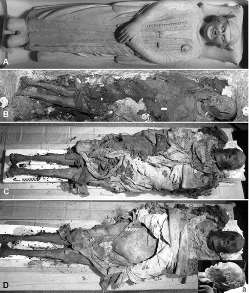 Sarcophagus and mummified remains of Cangrande I della Scala. Photo: Gino Fornaciari