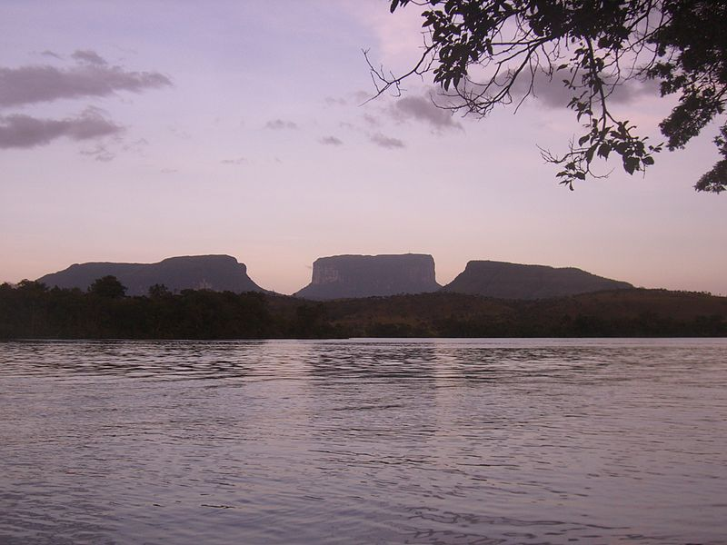 Landscape with Tepuis, Canaima National Park, Venezuela. Photo: Diego Delso via Wikimedia Commons