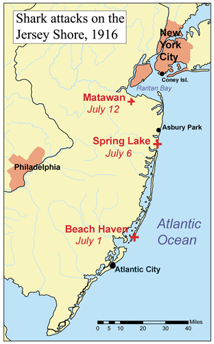 Map of the 1916 Jersey Shore shark attacks. Author: Kmusser via Wikimedia Commons